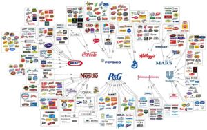 brands under one company