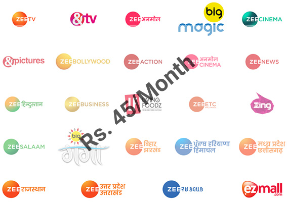 zee channel price